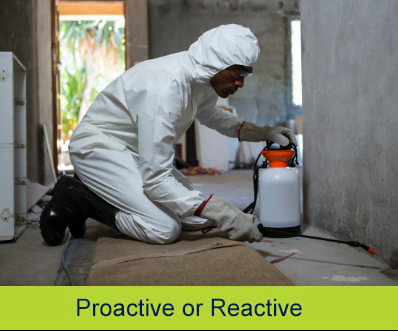 Proactive or Reactive